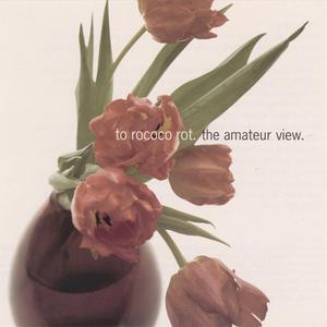 To Rococo Rot - The Amateur View (1999) {City Slang/Mute}