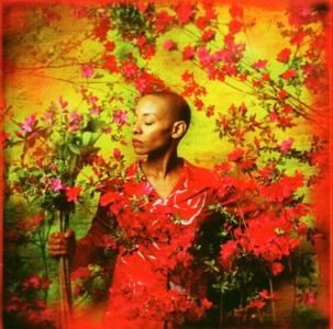 Gail Ann Dorsey - I Used To Be... (2004)