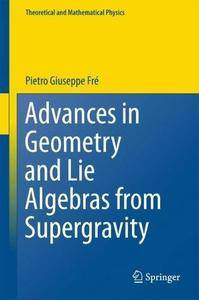 Advances in Geometry and Lie Algebras from Supergravity (Theoretical and Mathematical Physics)