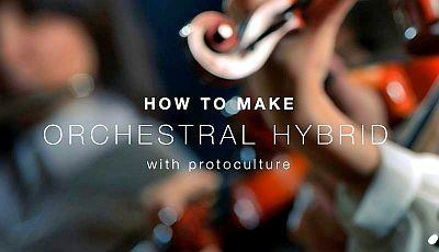 How To Make Orchestral Hybrid with Protoculture (2019)