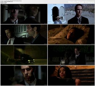 The Perfect Sleep (2009)