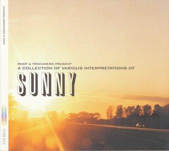 VA - A Collection of Various Interpretations of Sunny (2000)