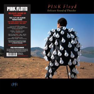 Pink Floyd - Delicate Sound Of Thunder (1988/2017) [2LP, Remastered, 180 Gram, DSD128]