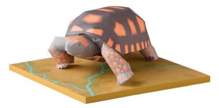 Yellow Footed Tortoise, Paper Craft Model