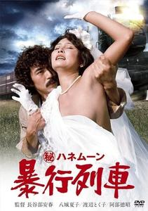 Secret Honeymoon: Rape Train (1977)