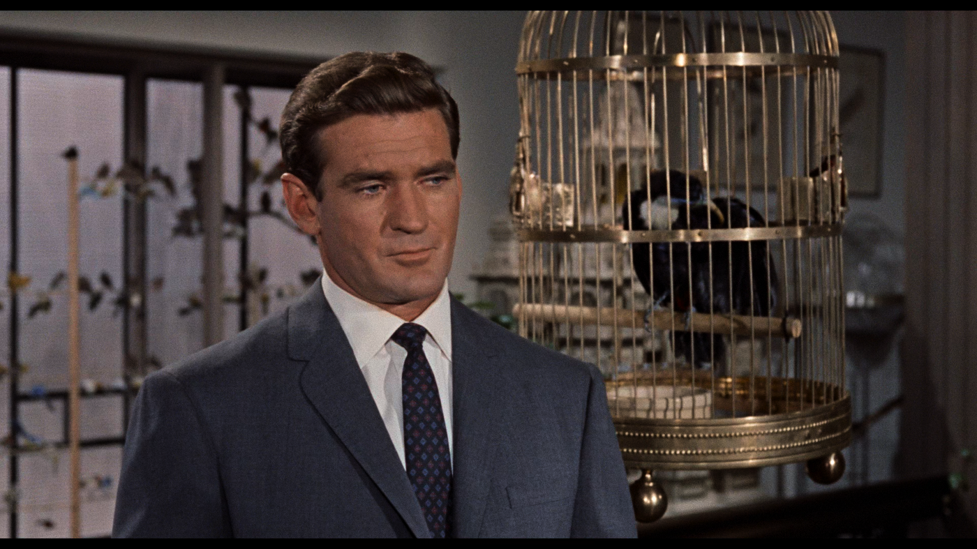 The Birds (1963) [4K, Ultra HD]