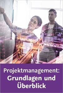 Video2Brain - Projektmanagement: Grundlagen und Überblick