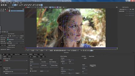 Imagineer Systems Mocha Pro Adobe / Avid Plugin 5.0.0