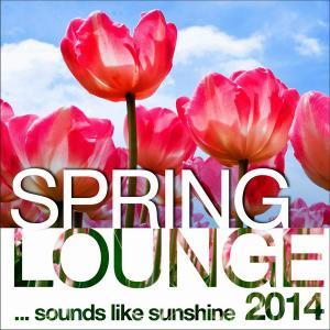 V.A. - Spring Lounge 2014: Sounds Like Sunshine (2014)