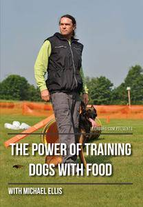 The Power of Training Dogs with Food