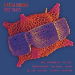 Kris Davis - Diatom Ribbons (2019)
