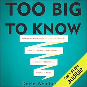 Too Big To Know [Audiobook]