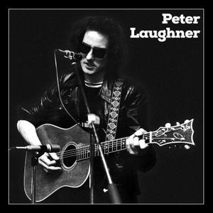 Peter Laughner - Peter Laughner Box Set (2019)
