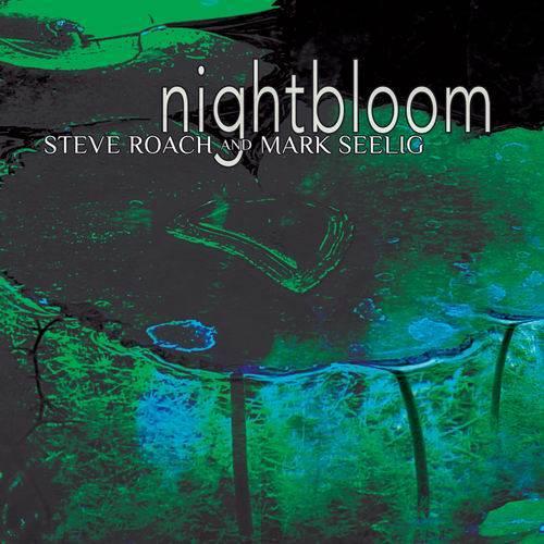 Steve Roach - 11 Albums (1986-2010) (Repost)