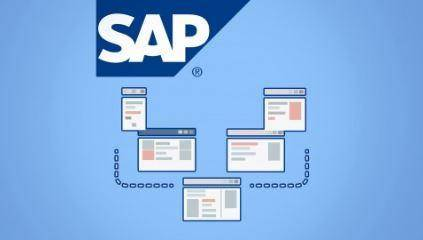 SAP Basis Essentials - Become a Great SAP Basis Consultant
