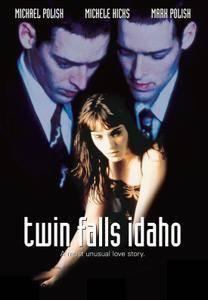 Twin Falls Idaho [Les Frères Falls] 1999