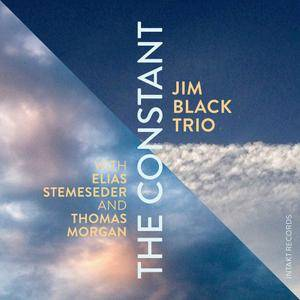 Jim Black Trio - The Constant (2016) [Official Digital Download 24bit/96kHz]