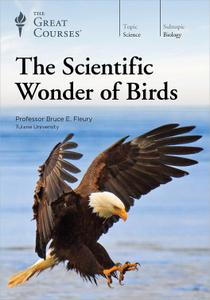 TTC Video - The Scientific Wonder of Birds