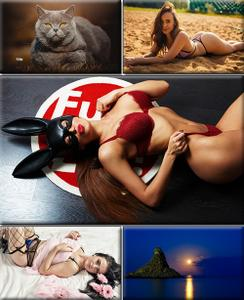 LIFEstyle News MiXture Images. Wallpapers Part (1496)