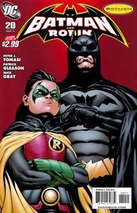 Batman and Robin 020