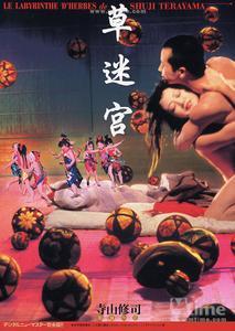 Grass Labyrinth (1979) Kusa-meikyû