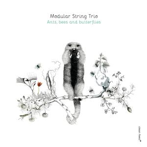 Modular String Trio - Ants, Bees and Butterflies (2016)