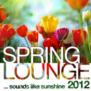 V.A. - Spring Lounge 2012: Sounds Like Sunshine (2012)