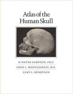 Atlas of the Human Skull (2nd Edition)