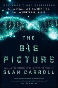 The Big Picture: On the Origins of Life, Meaning, and the Universe Itself (repost)