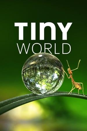 Tiny World S01E02