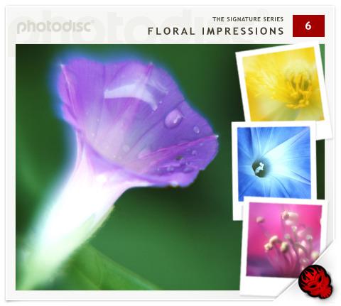 Photodisc Signature Series Vol. 6 - Floral Impressions