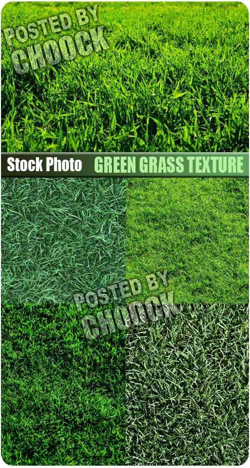 Stock Photo: Green grass texture