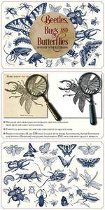 Vintage insects and butterflies 1608014