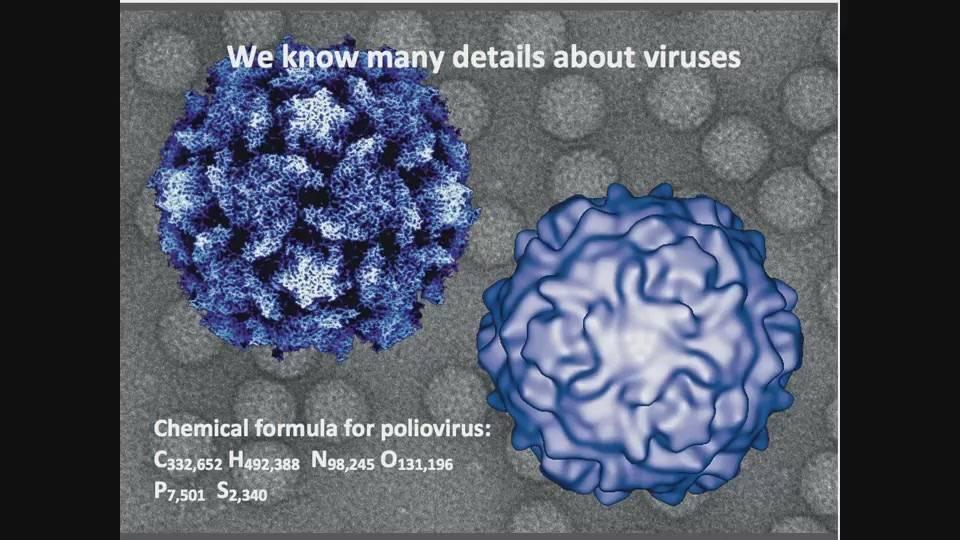 Coursera - Virology I - How Viruses Work