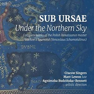 Agnieszka Budzinska-Bennett - Sub Ursae (2019)