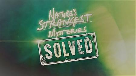 LLC - Natures Strangest Mysteries Solved Series 1: Part 15: Stripeless Zebra (2019)