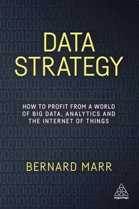 Data Strategy : How to Profit From a World of Big Data, Analytics and the Internet of Things