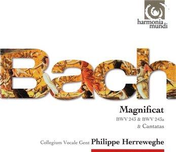 Bach - Magnificat BWV 243 & 243a, Kantaten BWV 8, 63, 80, 125, 138 (Philippe Herreweghe, Collegium Vocale Gent) [2010]