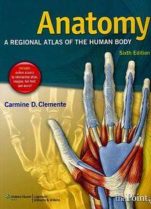 Anatomy: A Regional Atlas of the Human Body (6th edition)  (Repost)