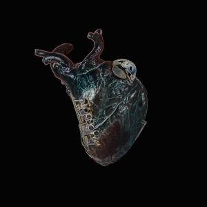 Seamus Blake - Guardians of the Heart Machine (feat. Tony Tixier, Florent Nisse & Gautier Garrigue) (2019)