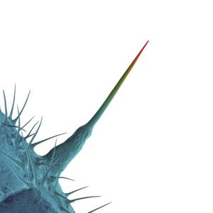 Peter Gabriel - And I'll Scratch Yours (Remastered) (2013/2019) [Official Digital Download]