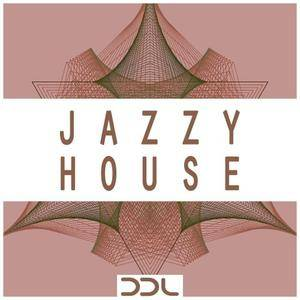 Deep Data Loops Jazzy House WAV MiDi