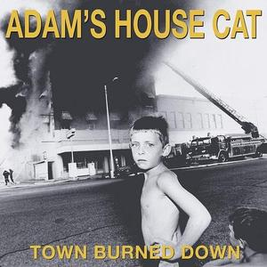 Adam's House Cat - Town Burned Down (1990/2018)