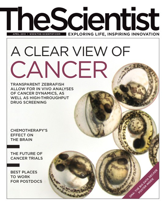 The Scientist - April 2013