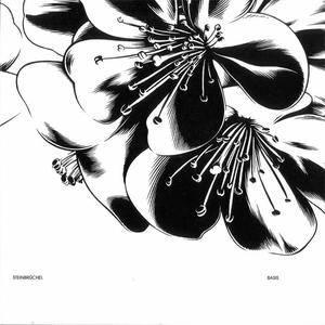 Steinbrüchel - Basis (2007) {Room40} **[RE-UP]**