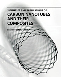 """""""Syntheses and Applications of Carbon Nanotubes and Their Composites"""" ed. by Satoru Suzuki"""