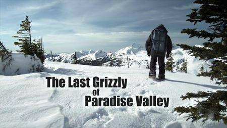 BBC Natural World - The Last Grizzly of Paradise Valley (2011)