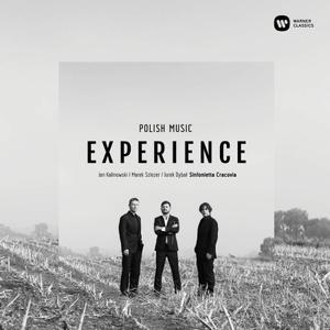 VA -  Polish Music Experience (2018)