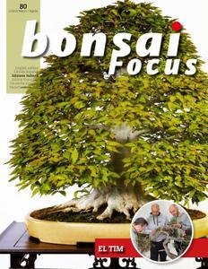 Bonsai Focus (Italian Edition) - marzo/aprile 2019