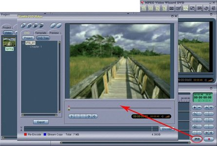 Womble MPEG Video Wizard DVD 5.0.1.102 Portable